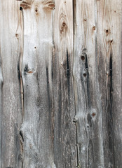 Natural wooden backgrounds