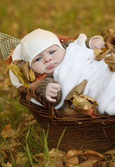Baby in autumn