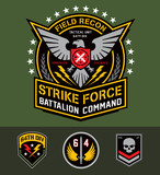 Military eagle graphic set