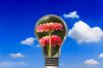 Flowers in the light bulb