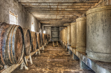 Wine barrels and vats in an abandoned wine cellar