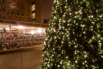 Christamas tree in city near bike parking