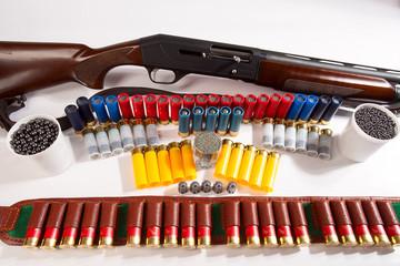 Gun and hunting cartridges