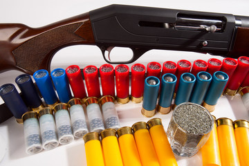Gun and hunting cartridges