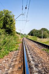 prospect of railway in a landscape in summer