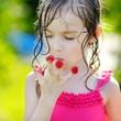 Adorable little girl eating raspberries