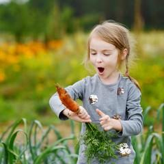 Adorable little girl picking carrots