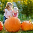 Two little sisters playing with huge pumpkins