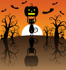 Halloween Background with Pumpkins and black cat