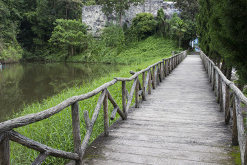 wooden pathway beside the lake