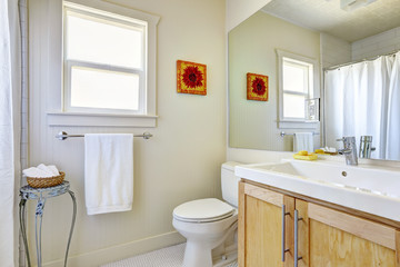 Bright simple bathroom