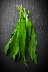 Fresh wild garlic leaves
