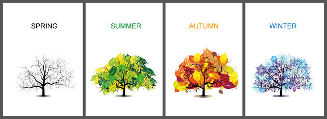 vector_four season trees