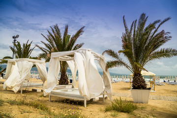 Beach tent and palms in summer