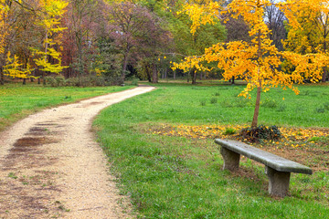 Footpath and bench in autumnal park.