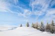 canvas print picture - Winter's tale