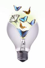 lampadina farfalla