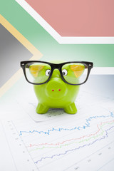 Piggy bank with flag on background - South Africa
