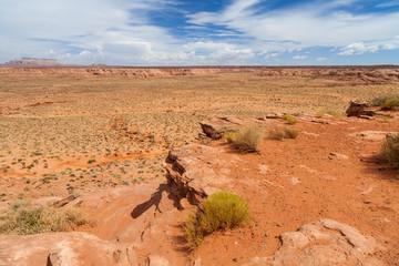 Scenario desertico in Arizona, USA.