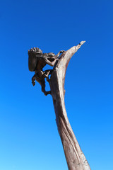 Mesa Verde National Park - Monument