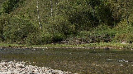 The mountain river with rapid current