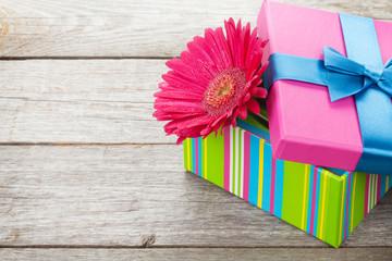 Purple gerbera flower in gift box