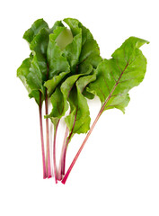 beet leafs isolated