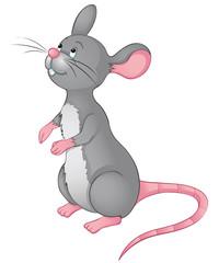 bettelndes Mäuschen
