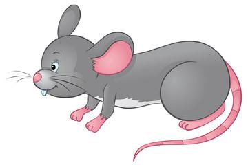 schnuppernde Maus