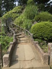 鳩森八幡神社の富士塚