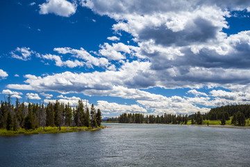 River and forest landscape in Yellowstone National Park, Wyoming
