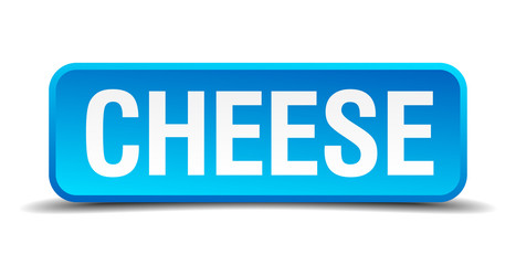 cheese blue 3d realistic square isolated button