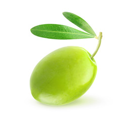 Green olive on white background