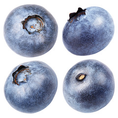 Set of blueberry berry isolated on white with clipping path