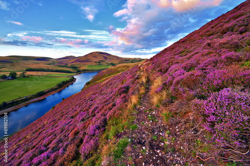 Staande foto Heuvel Beautiful landscape of scottish nature