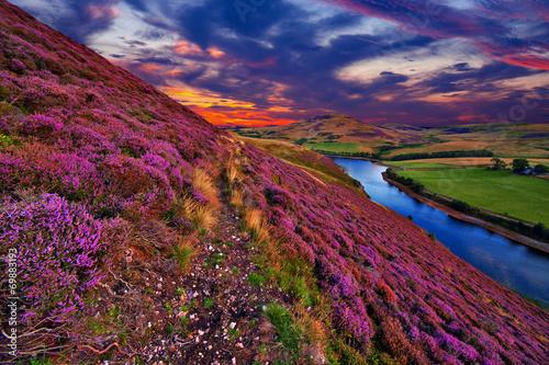 Poster Heuvel Beautiful landscape of scottish nature