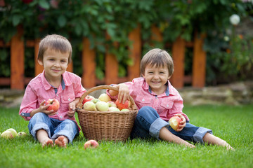 Two adorable boys, sitting on the grass, eating apples