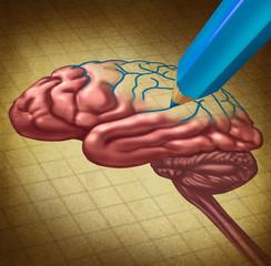 Repairing The brain