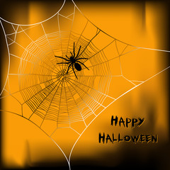 Halloween vector background with spider on web
