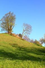 Hügel im Tal