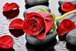 canvas print picture - Czerwona róża na kamieniu bazaltowym