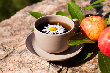 Tea with chamomile and apples on stone
