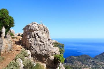 Wanderweg auf Mallorca mit Meer im Hintergrund