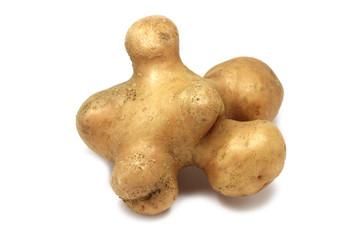 big curve potato isolated on white background