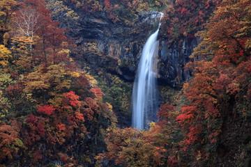 紅葉の惣滝