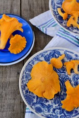 Chanterelle mushrooms in blue plates