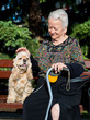 Old woman sitting on a bench with cocker spaniel