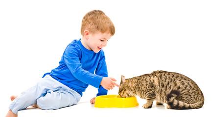 Boy feeds the cat