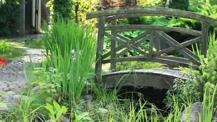 Garden Landscape with bridge
