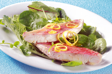Grilled fresh fish fillets on leafy green salad
